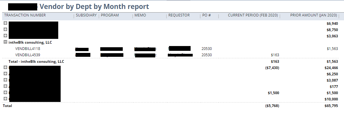 NetSuite_Vendor_Department_Report